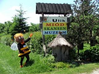Ulik, naturalny miód pszczli, skansen pszczelarstwa i muzeum wsi.