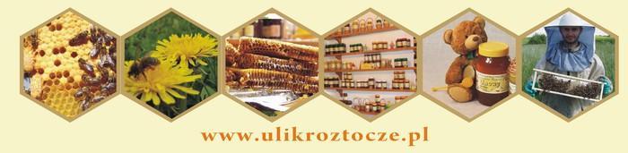 naturalny miód pszczeli z pol i lasów Roztocza