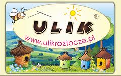 Gospodarstwo Pasieczne ULIK na Roztoczu producent naturalnych miodów pszczelich