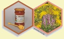 naturalny miód nawłociowy-wrzosowy z pasieki Ulik na Roztoczu i kwaity nawłoci