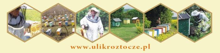 Pasieka ULIK na Roztoczu, producent naturalnego miodu pszczelego.