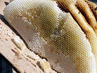 Naturalny plaster miodu