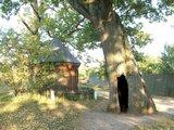 Drewniana kaplica pod dębami w Górecku Kościelnym