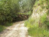 Pozostałości okopu Grodu Czerwieńskiego Sutjesk w Sąsiadce