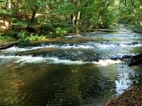 Wodospady na rzece Tanew